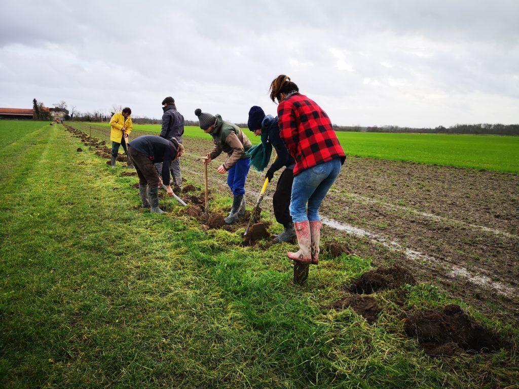 ReNArd invite les agriculteurs ardennais à soigner la biodiversité