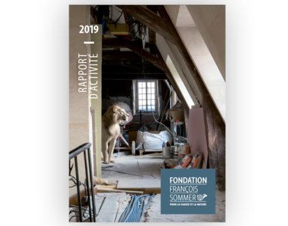 Rapport d'activité 2019 : retour sur images...